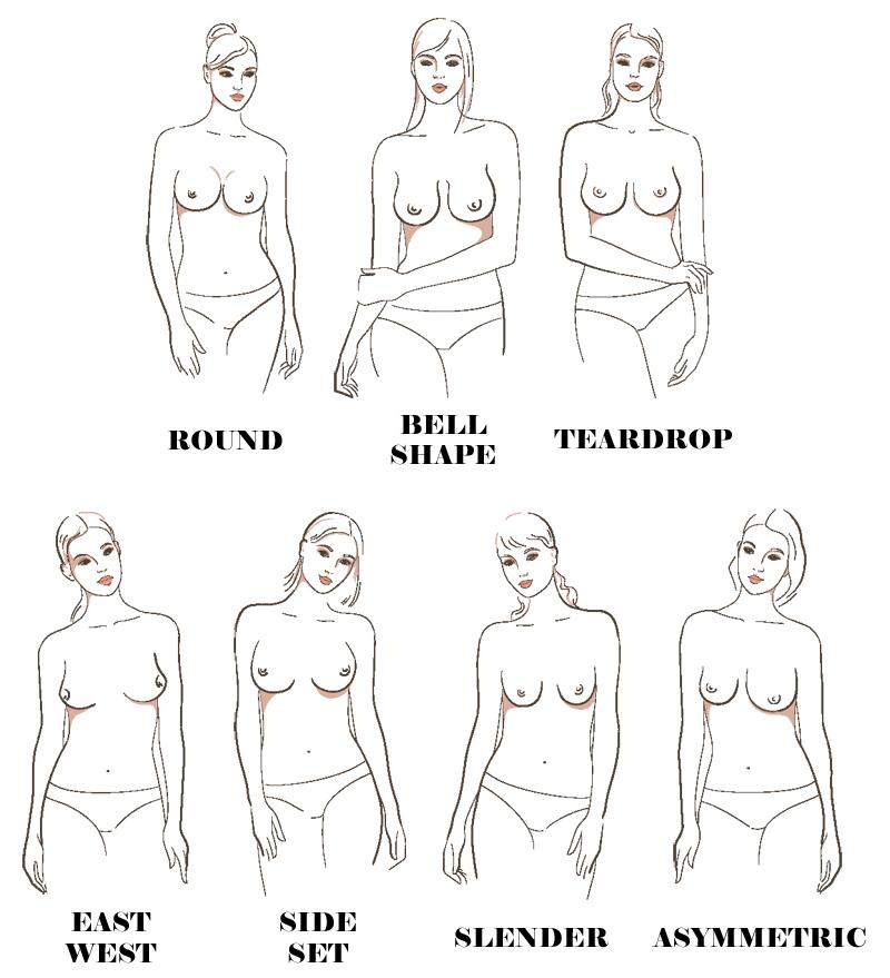 Seven Main Breast Shapes